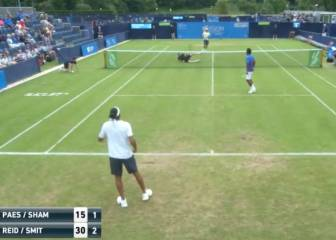 Al tenis se puede jugar sentado: miren este puntazo