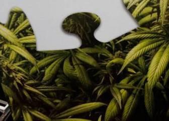 ¿Permitir el uso de la marihuana? Nuevo planteamiento en la NBA
