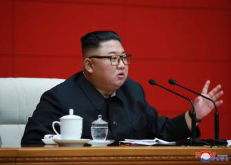 Kim Jong-un prohíbe los perros como mascota en Corea del Norte