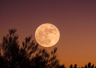 Luna llena de Cosecha: horarios, cuándo es y cómo ver la luna llena de septiembre