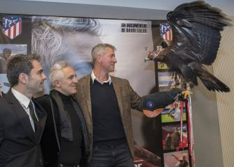"""Dreams of the air"", story of a falconer: Jorge Castaño   - Transgaming 1"