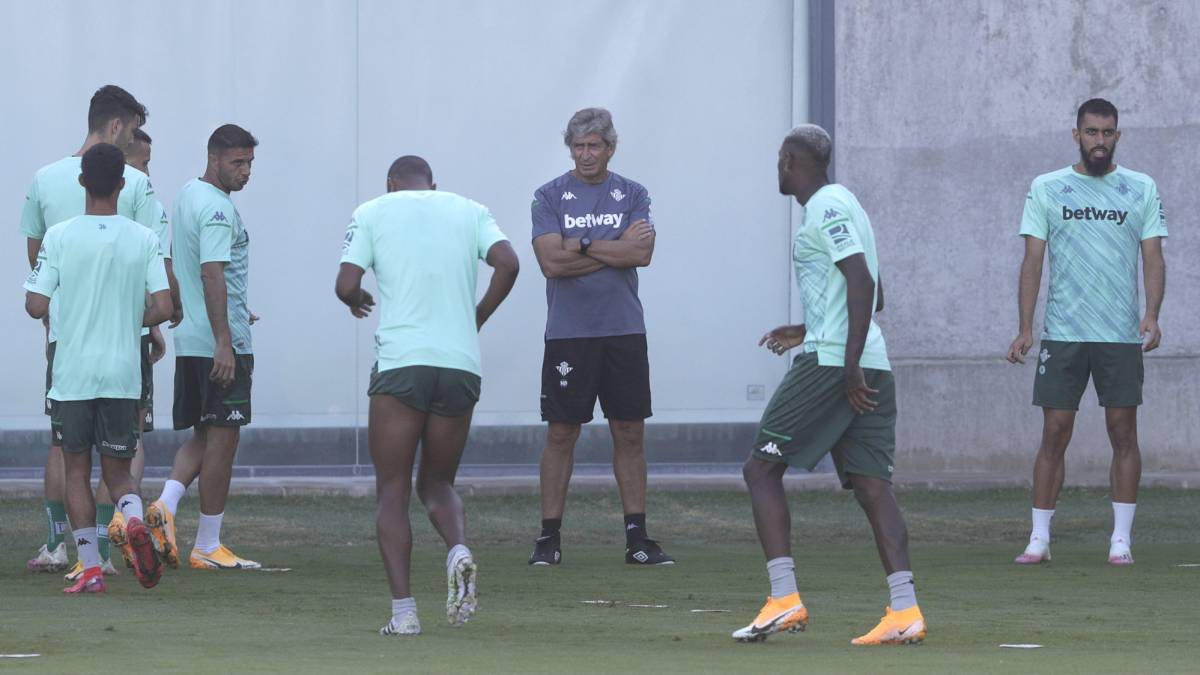 "The-Pellegrini-effect-minimizes-doubts:-""We-are-ready"""