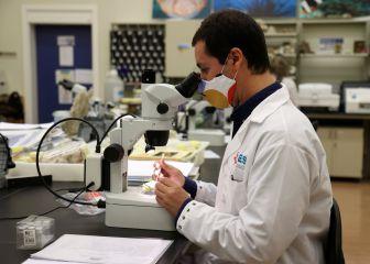 Aspetar potencia los esfuerzos cataríes en organizar el Mundial de 2022 pese a la pandemia 1