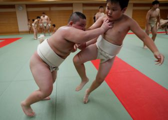 El aprendiz de estrella del sumo que ya pesa 85 kilos con 10 años 1