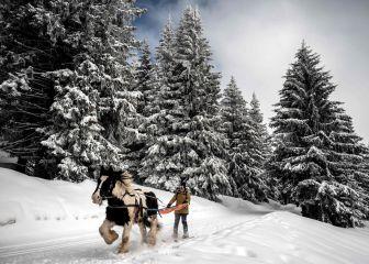 Ski joring sobre la nieve de los Alpes franceses