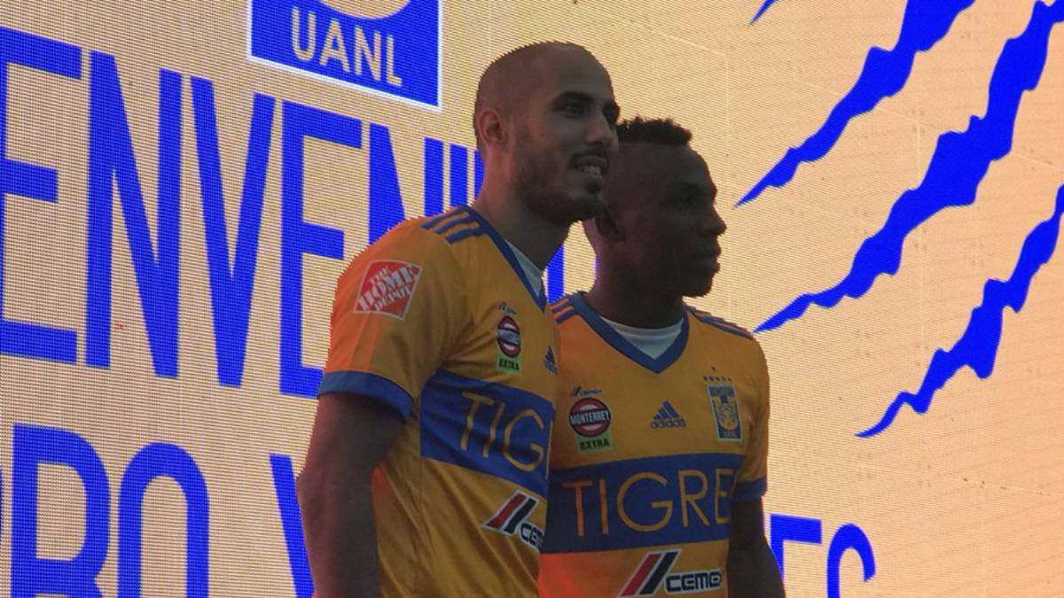 Image result for quiñones y guido pizarro