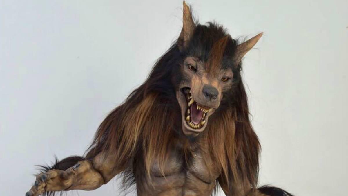 Mascota Lobos Buap Bucharest Online Com