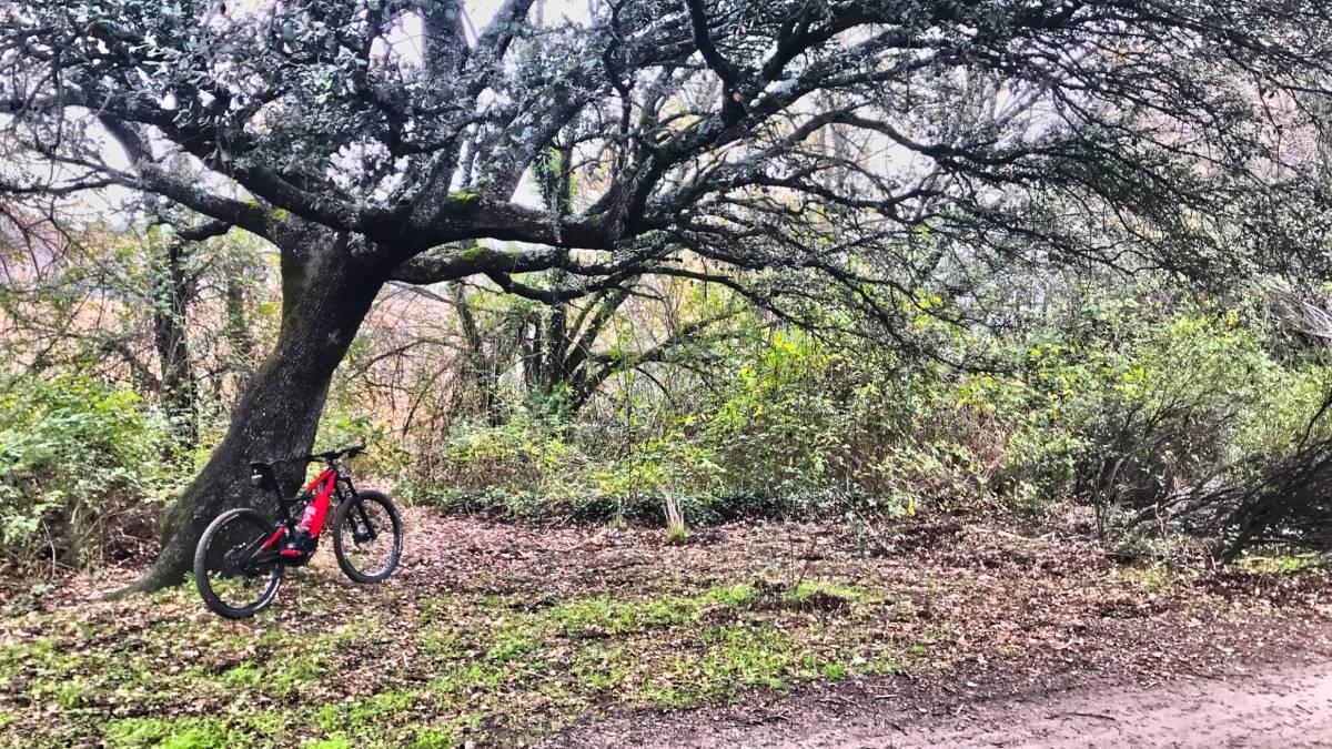 ¿Se puede volver a los pedales de plataforma con las e-bikes?