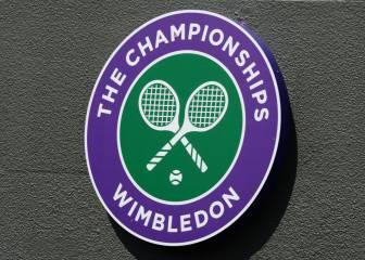 Wimbledon pide respeto tras el incidente de Verdasco con un recogepelotas
