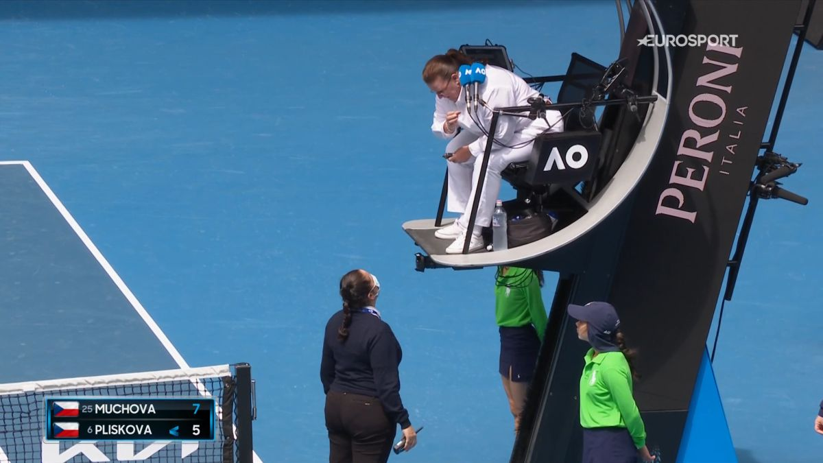 A-security-guard-tells-of-an-action-by-Pliskova-and-the-Czech-is-taken-away-a-point