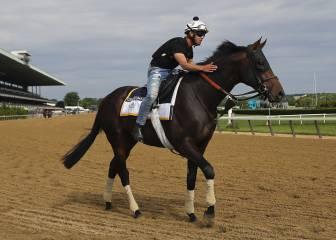 Gronkowski se encontró con el caballo que lleva su nombre